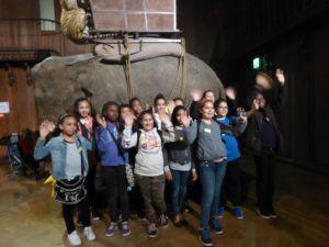 Boulogne au museum